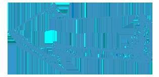 blue-arrow copy